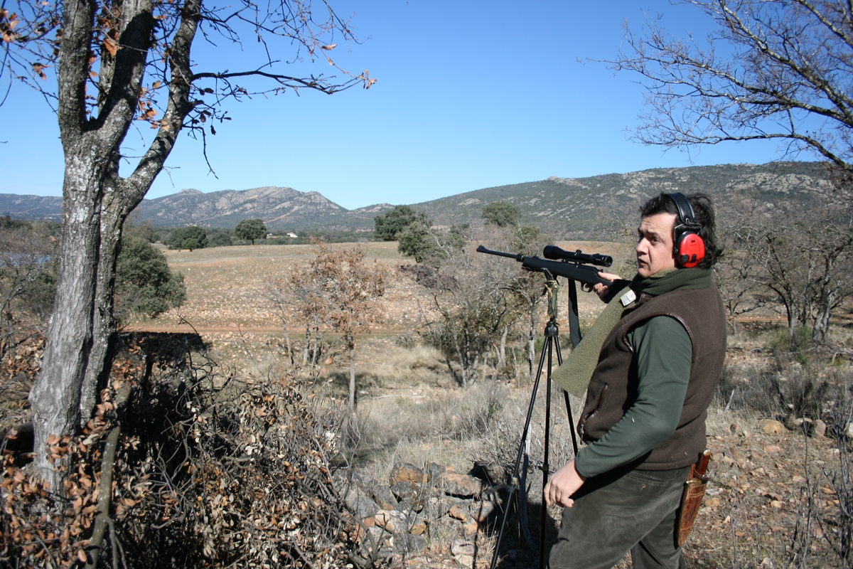 Stalking and montería. Hunting package. Stand